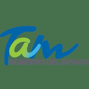 Gobierno de Tamaulipas Logo Web
